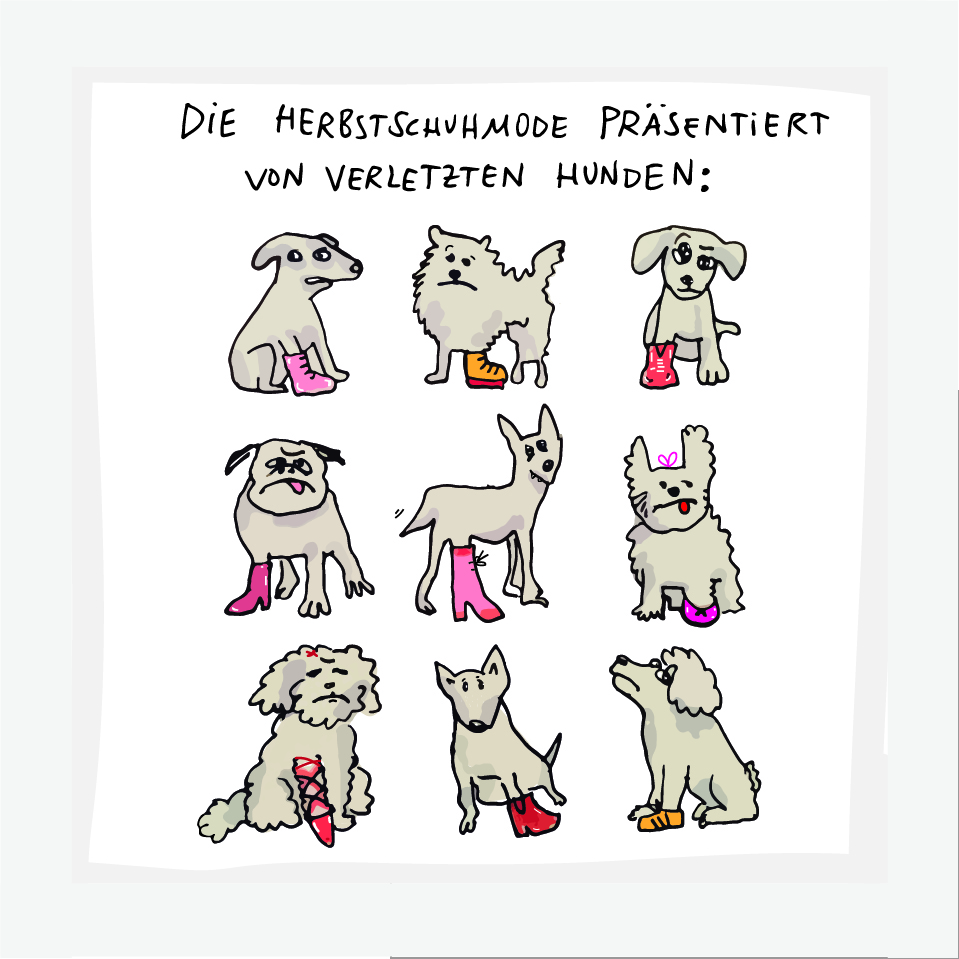 Ingrid Wenzel Comedian Cartoons Dogs